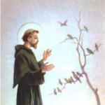 Secular Franciscan Fraternity